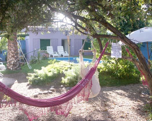 Hostel Lao's awesome backyard and hammocks.
