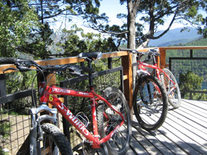 the Specialized mountain bikes we rented to ride up Chapelco