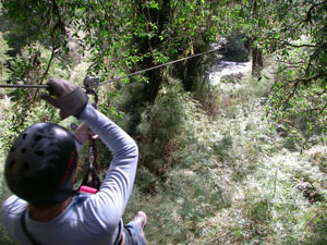 Awesome.  Canopying on zip-lines through the forests of Chile.
