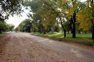 The tree-lined streets of San Antonio de Areco