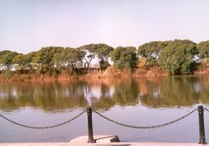 Rerseva ecologica Puerto Madero Costanera Sur Buenos Aires Argentina