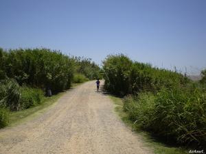 Running Reserva Ecologica